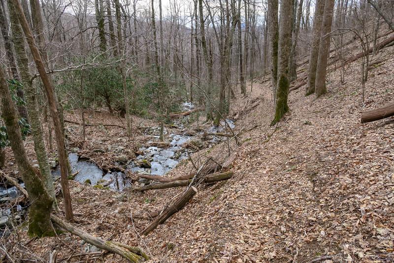 Thompson Creek Trail -- 3,820'