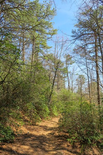 Thrift Cove Trail -- 2,750'