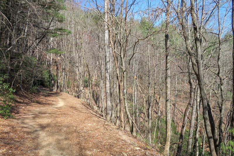 Thrift Cove Trail -- 2,500'