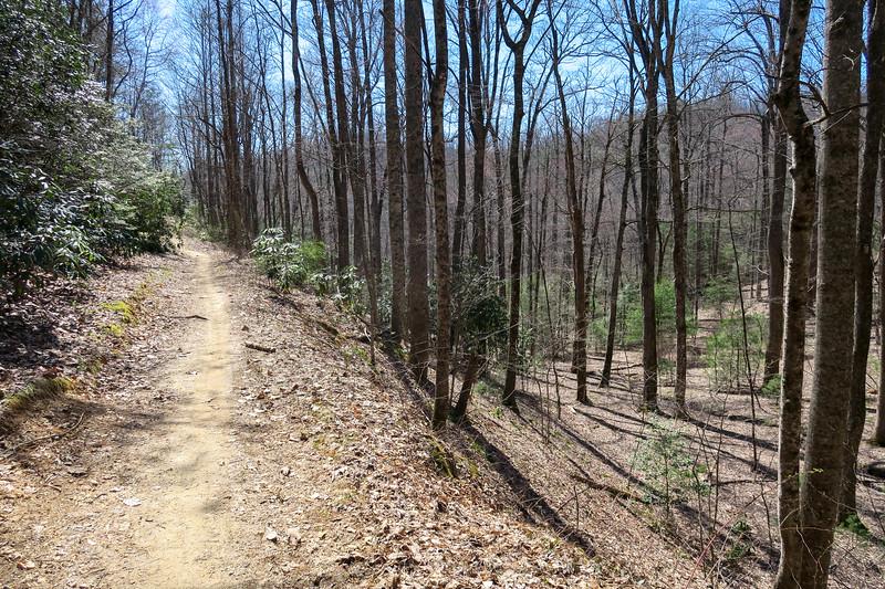 Thrift Cove Trail -- 2,880'