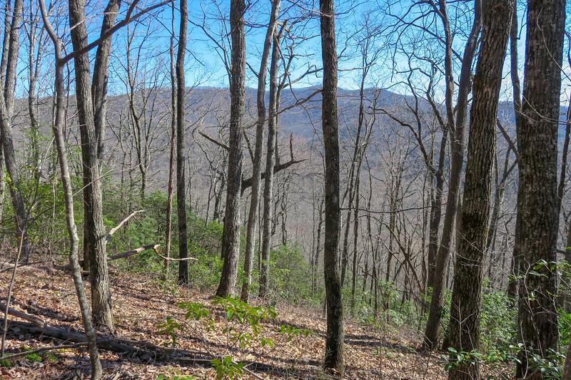 Trace Ridge Trail -- 2,920'