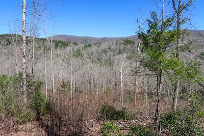 Trace Ridge Trail -- 2,540'