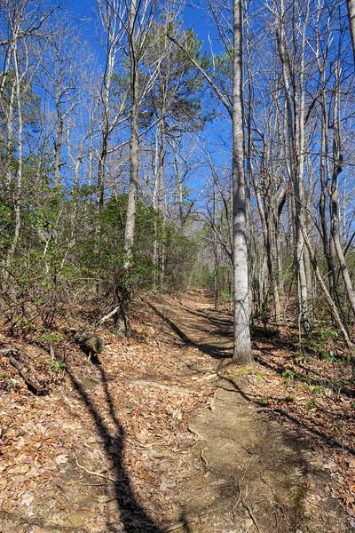 Trace Ridge Trail -- 3,360'