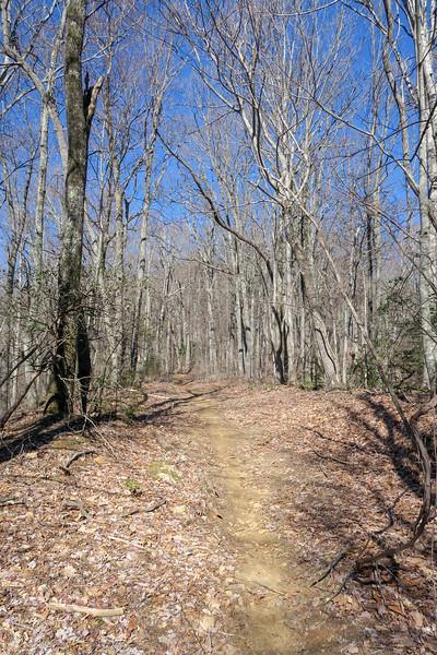 Trace Ridge Trail -- 3,220'