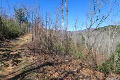 Trace Ridge Trail -- 2,520'