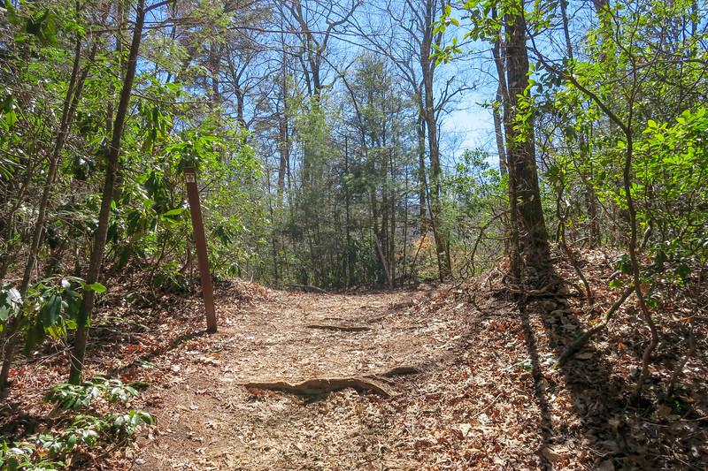 Trace Ridge Trail -- 2,500'