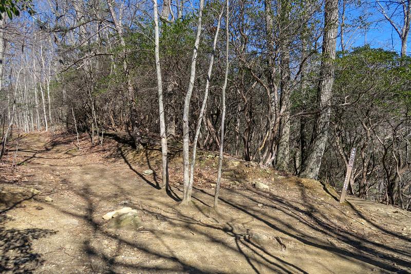 Trace Ridge/Spencer Gap Trail Junction -- 3,340'