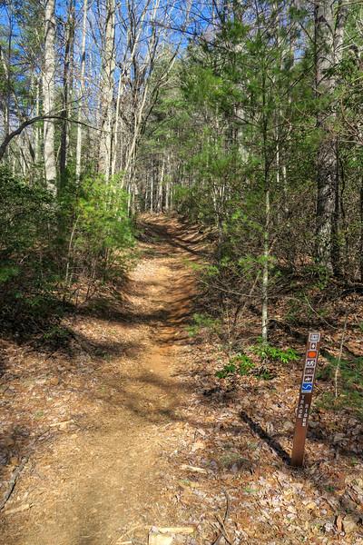 Trace Ridge Trail/F.R. 5097A Split -- 2,620'