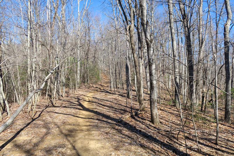 Trace Ridge Trail -- 3,200'