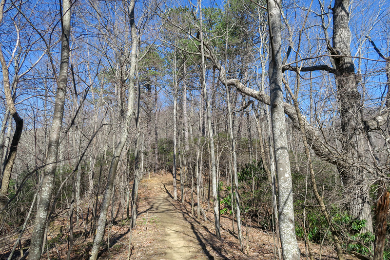 Trace Ridge Trail -- 3,330'