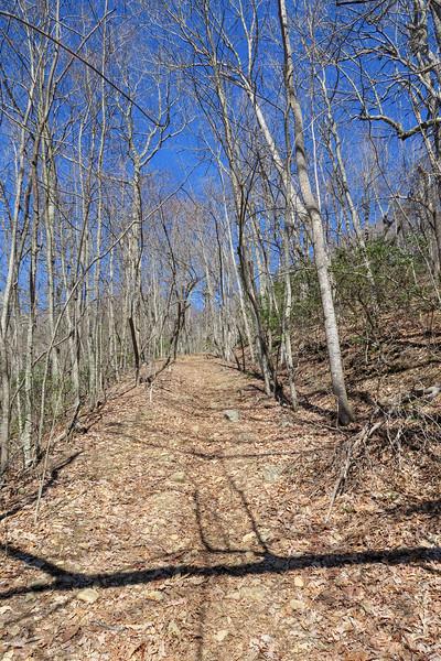 Trace Ridge Trail -- 3,550'
