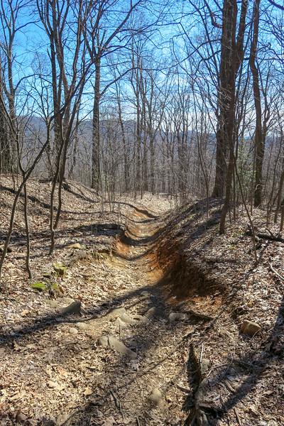 Trace Ridge Trail -- 3,300'
