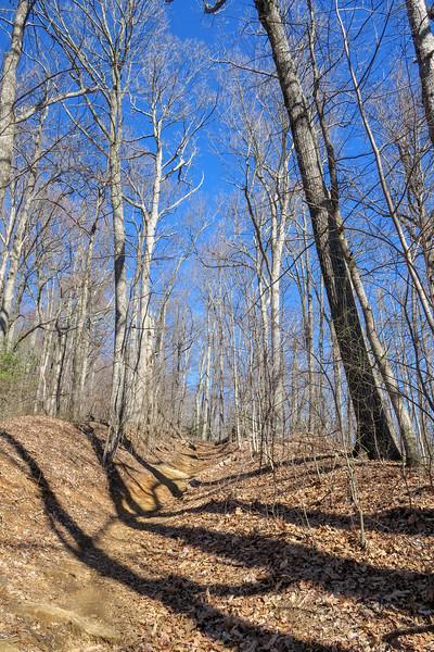 Trace Ridge Trail -- 3,250'