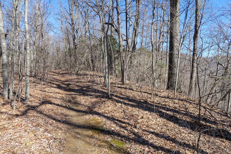 Trace Ridge Trail -- 3,400'