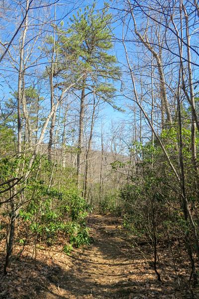 Trace Ridge Trail -- 3,480'