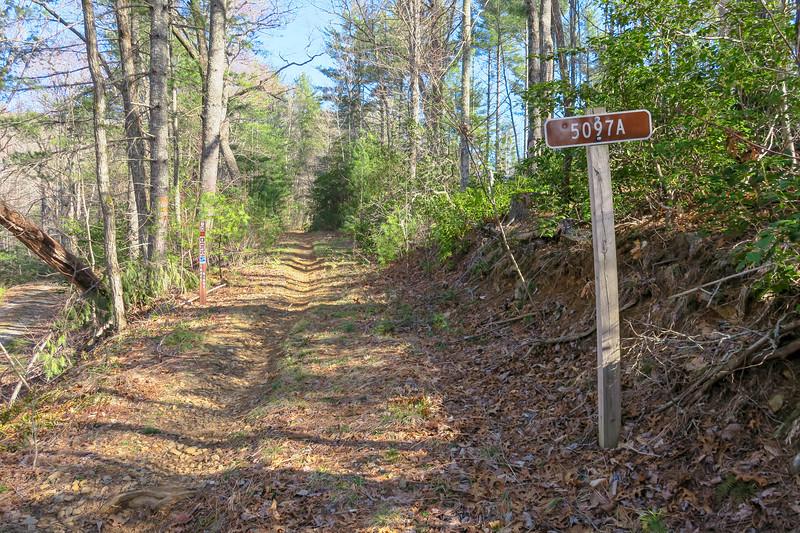 Trace Ridge Trail -- 2,570'