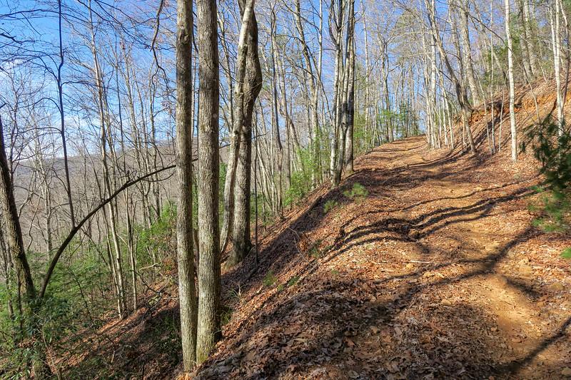 Trace Ridge Trail -- 2,760'