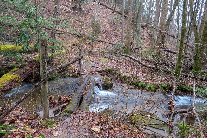 Twin Falls Trail -- 2,770'
