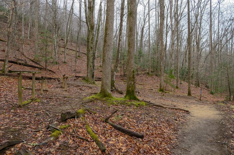 Twin Falls/Buckhorn Gap Trail Upper Junction -- 2,740'