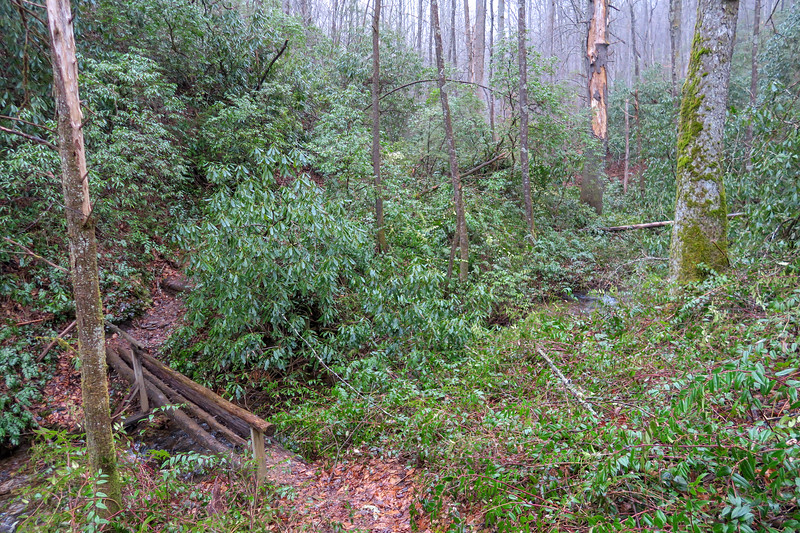 Twin Falls Trail -- 2,690'