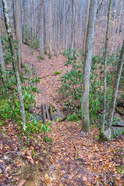 Twin Falls Trail -- 2,780'
