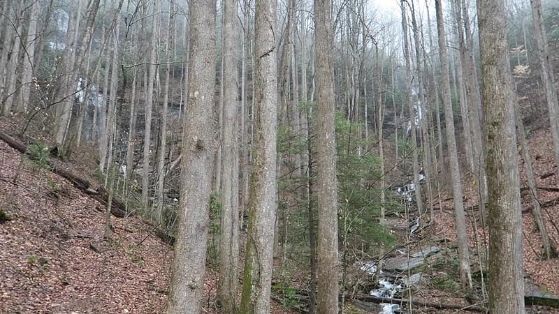 Twin Falls Trail @ Twin Falls -- 2,780'