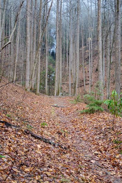 Twin Falls Trail -- 2,790'