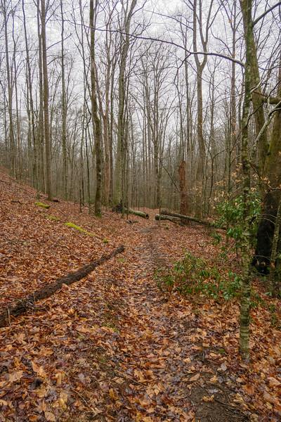 Twin Falls Trail -- 2,760'