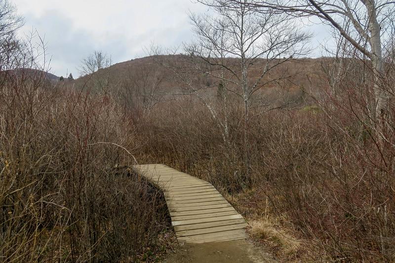 Upper Falls Trail -- 5,050'