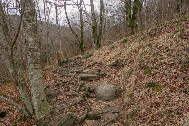 Upper Falls Trail -- 5,180'