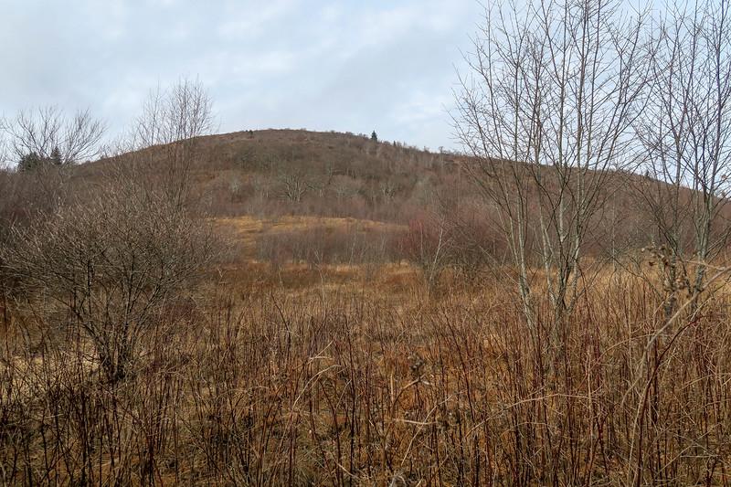 Upper Falls Trail -- 5,060'