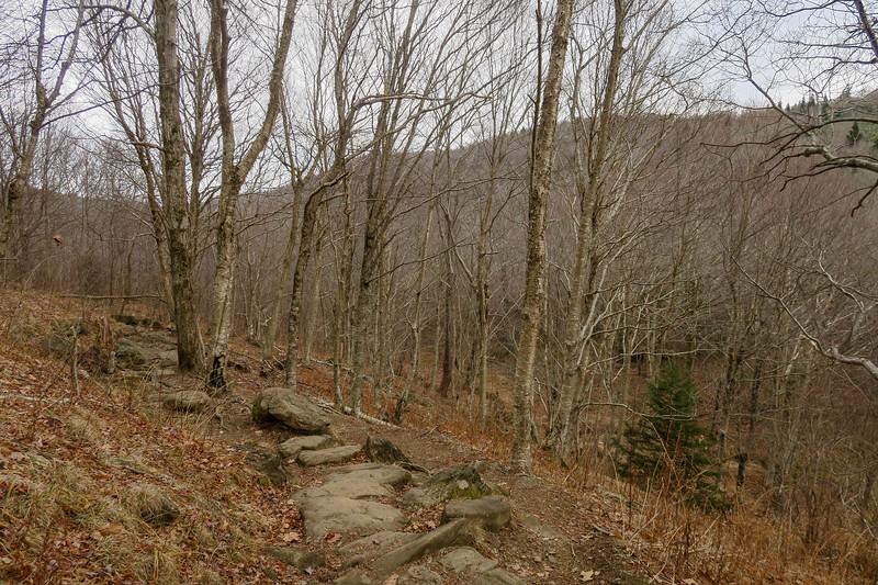 Upper Falls Trail -- 5,240'