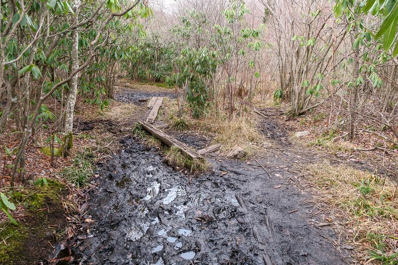 Upper Falls Trail -- 5,090'