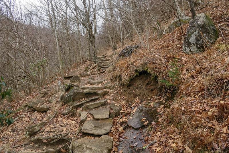 Upper Falls Trail -- 5,270'