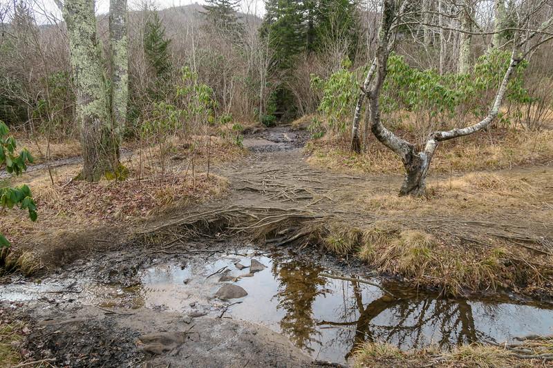 Upper Falls Trail -- 5,070'
