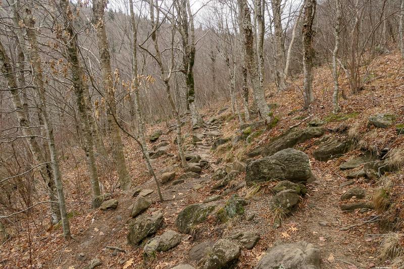 Upper Falls Trail -- 5,230'