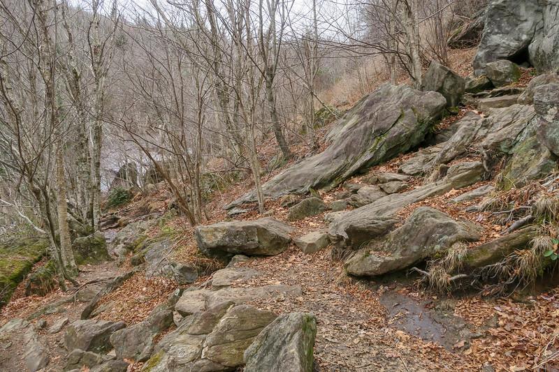 Upper Falls Trail -- 5,300'