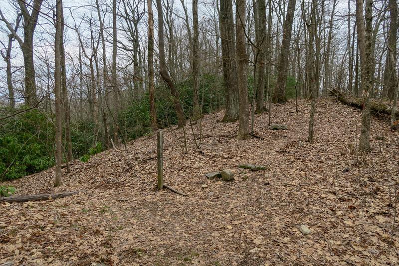 Vineyard Gap Trail @ Vineyard Gap -- 2,850'