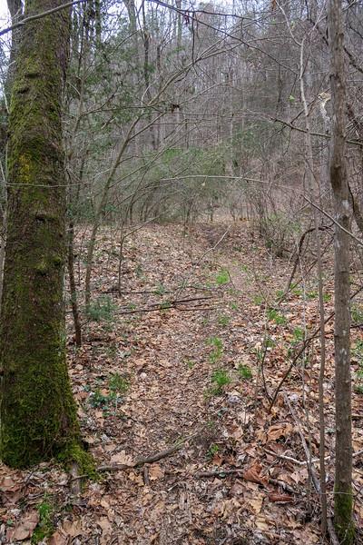 Vineyard Gap Trail -- 2,290'