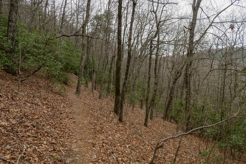 Vineyard Gap Trail -- 2,950'