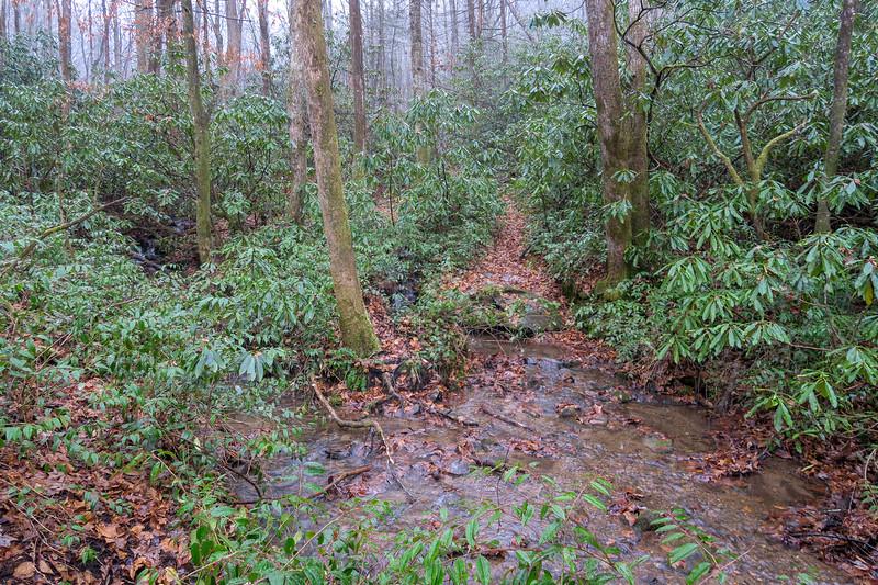 Wagon Road Gap Trail -- 2,570'