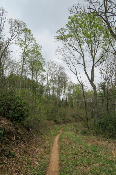 Wash Creek Trail -- 2,420'