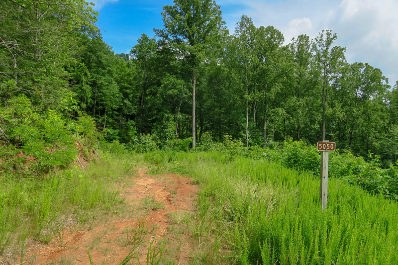 Yellow Gap Trail (F.R. 5050)/F.R. 5051 Junction -- 2,780'