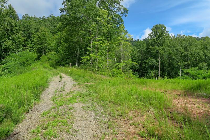 Yellow Gap Trail (F.R. 5050)/F.R. 5051 Junction -- 2,790'