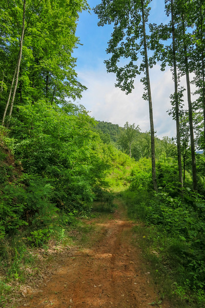 Yellow Gap Trail -- 2,750'