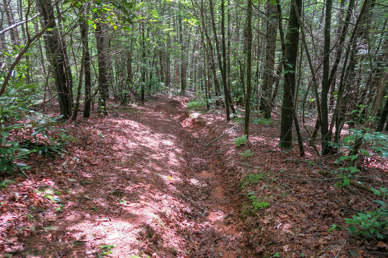 Yellow Gap Trail -- 2,350'