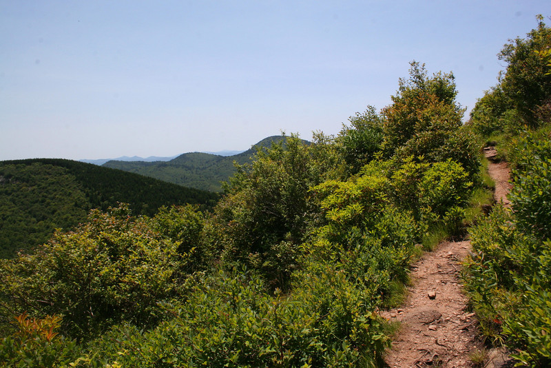 Sam Knob Summit Trail