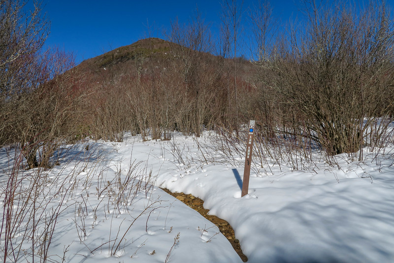 Sam Knob Trail -- 5,440'