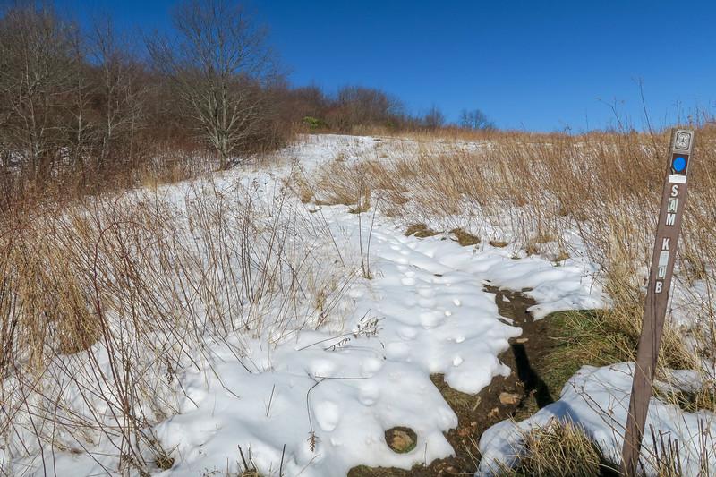 Sam Knob Trail -- 5,620'