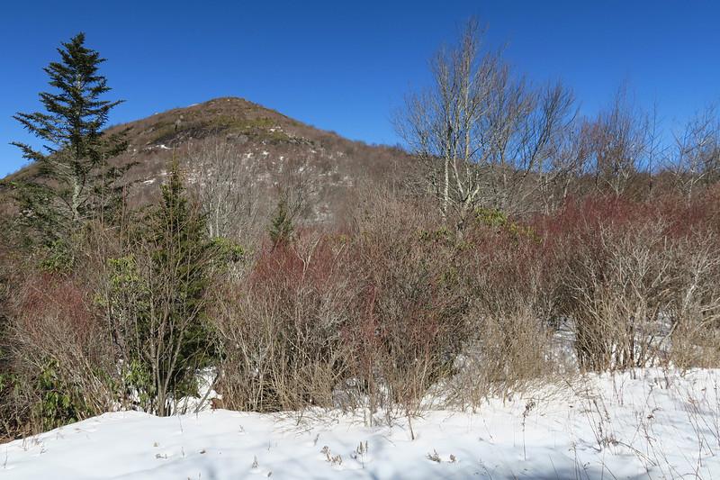 Sam Knob Trail -- 5,420'